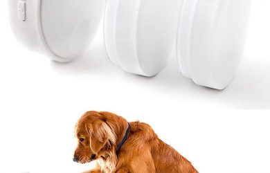 Dog Potty Communication Doorbell